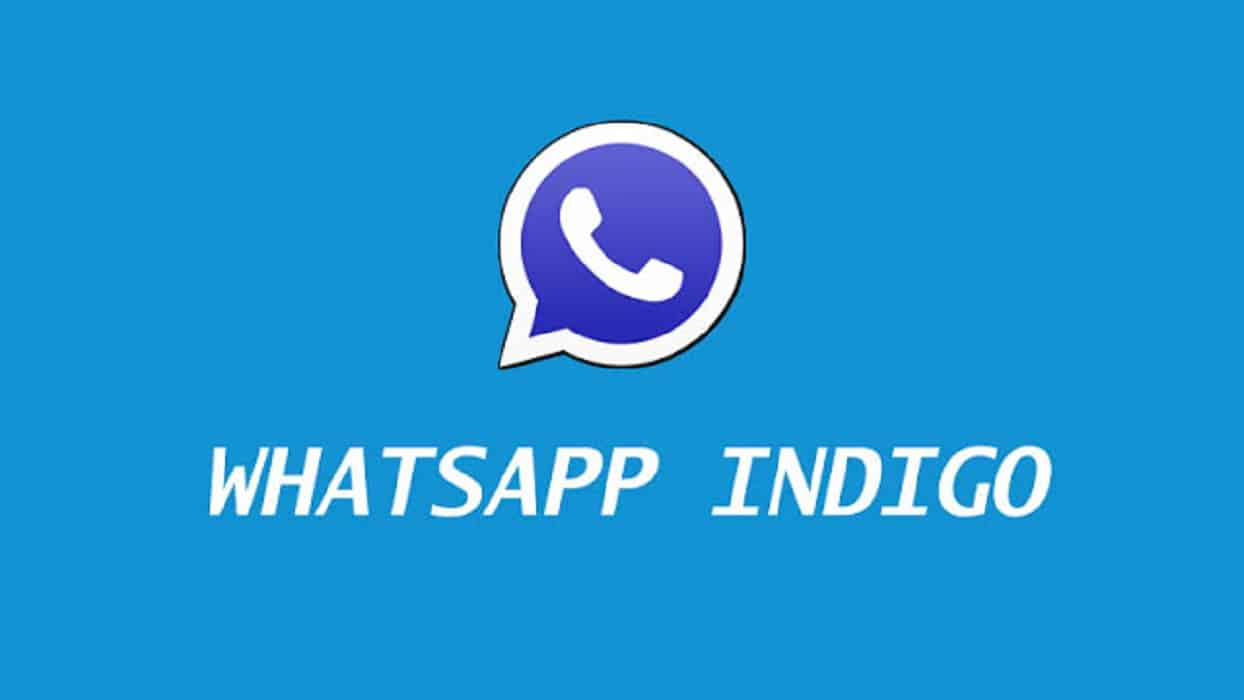 Apa-Itu-WhatsApp-Indigo