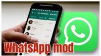 Apa-Itu-Whatsapp-Mod