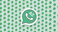 az-whatsapp