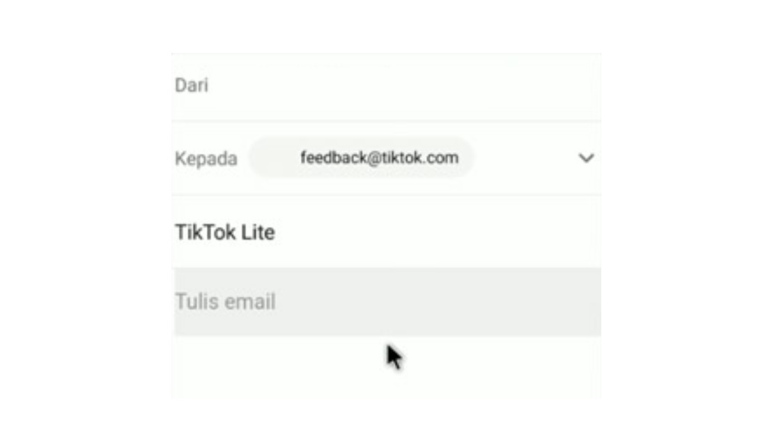 Jangan-lupa-untuk-mengikutsertakan-juga-pengiriman-ID-TikTok-Lite-dalam-pesan-email-Anda-tersebut